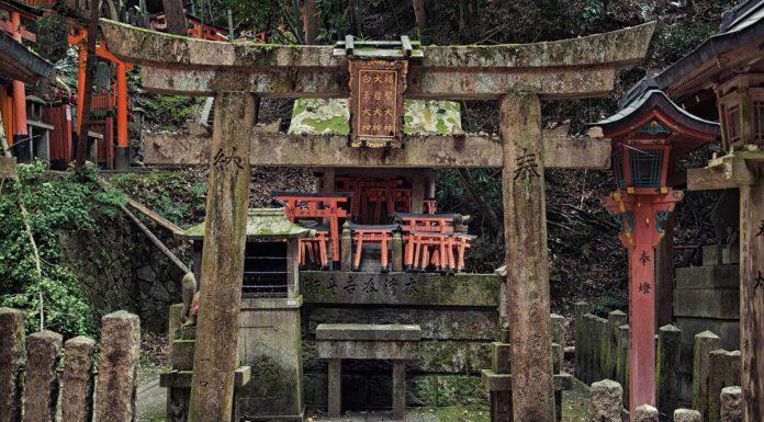 Torri sul percorso secondario del Fushimi Inari, Kyoto, Giappone