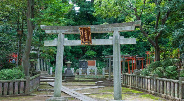 Torii all'interno del Santuario Nezu, Tokyo, Giappone