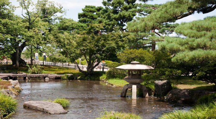 Dettaglio del giardino Kenrokuen, Giappone