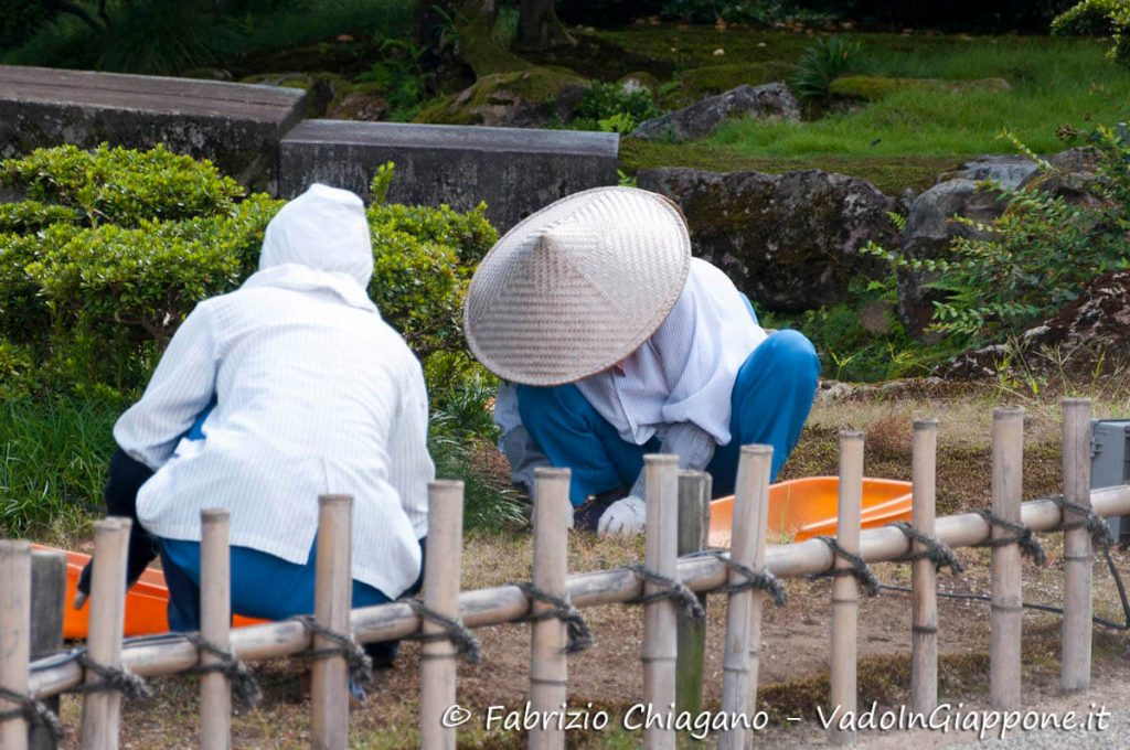 Pulizia manuale dei giardini, Kenrokuen, Giappone