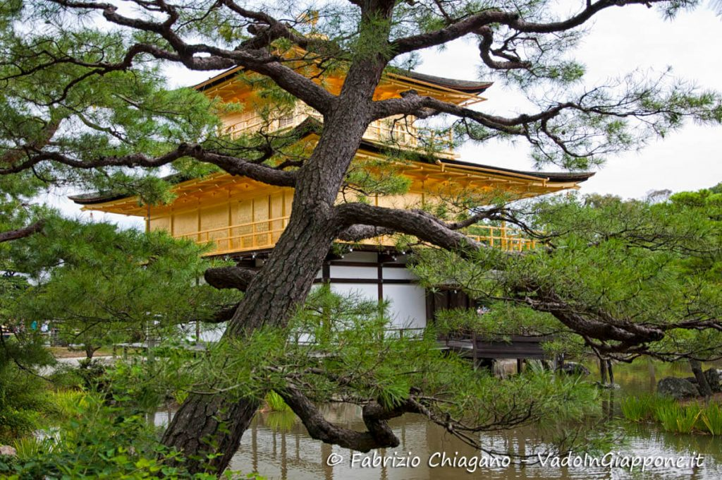 Scorcio del Tempio Kinkakuji visto dal retro, Kyoto, Giappone