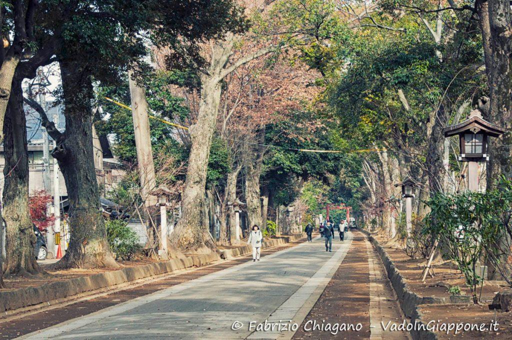 Viale d'ingresso al santuario di Hikawa di Omiya