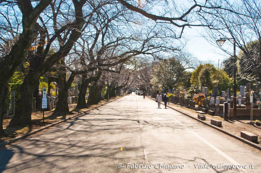 Il cimitero cittadino di Yanaka, Tokyo