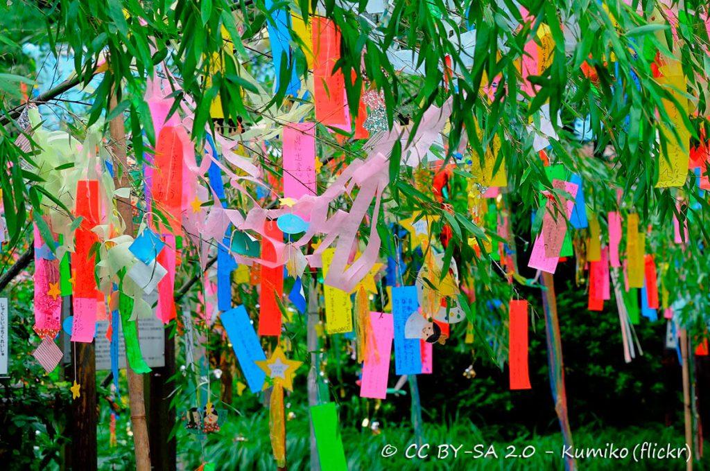Desideri e preghiere appesi alle foglie di bambù durante il Tanabata