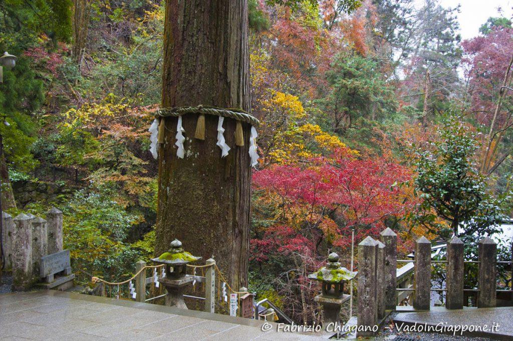 Credo millenario del santuario Yuki sul Monte Kurama