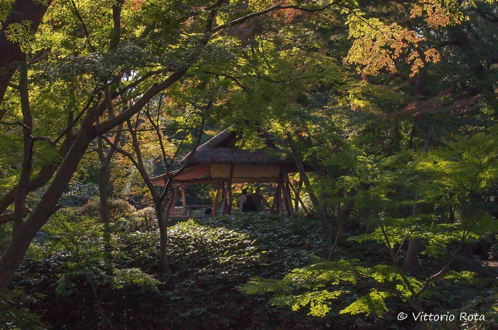 Diario di viaggio in Giappone di Vittorio Rota: Rikugien