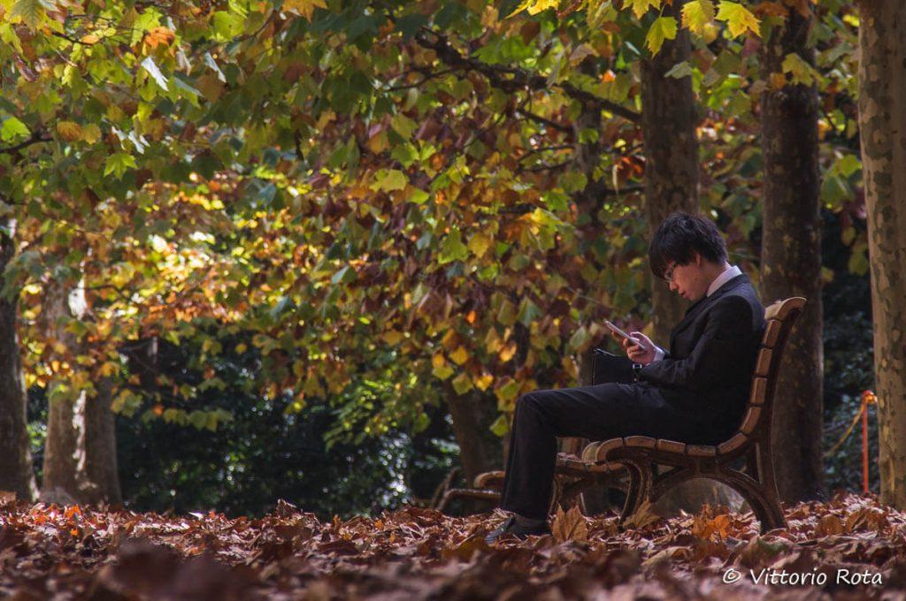 Diario di viaggio in Giappone di Vittorio Rota: parco in autunno